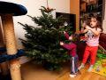 Mit Giulia den Weihnachtsbaum schmücken